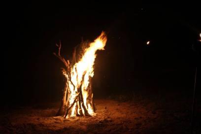 Camp fire night