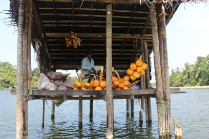 Floating Coconut shop-Madu River