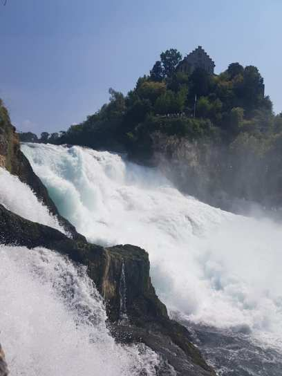 Rhine Falls 3